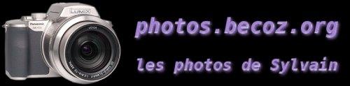 Photos de Sylvain